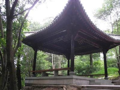 瑞安万松公园             万松公园位于瑞安市阳光北路附近,万松山的