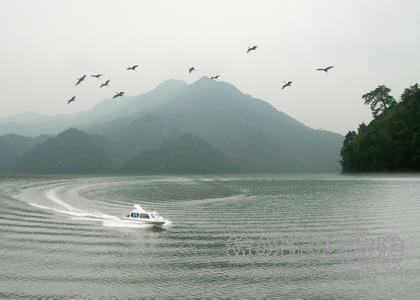首页 景点门票 吉安景区门票 泰和县白鹭湖国家森林公园